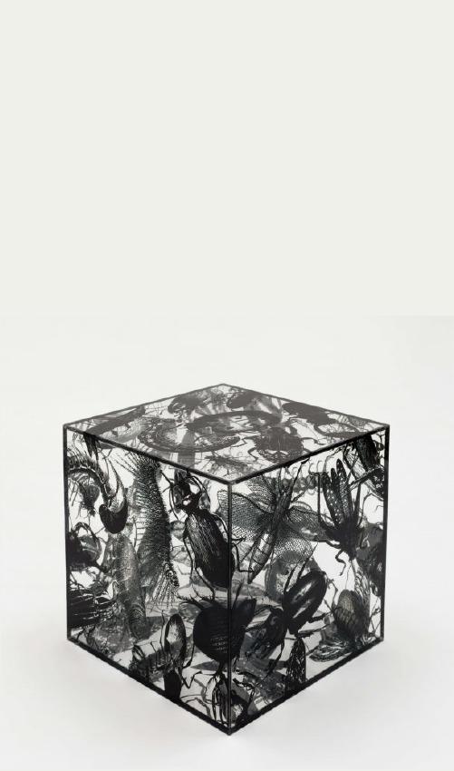 Múltiplo Caixa de Pandora